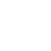 nachhaltigicon